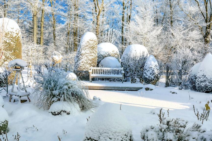 Garten im Winter pflegen