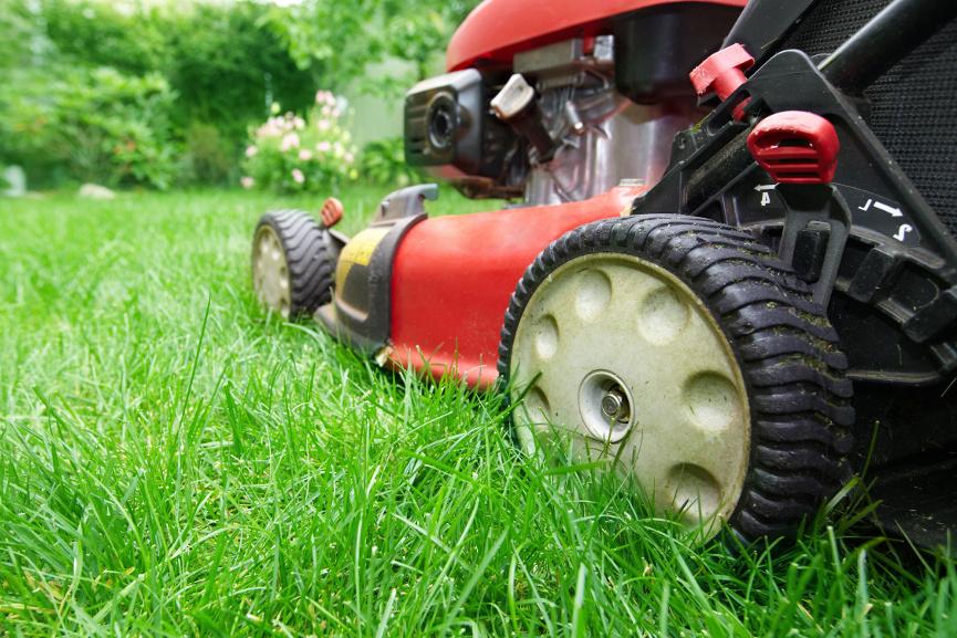 Rasen richtig mähen