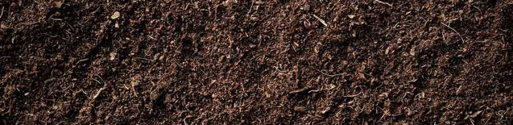 Bodenaktivator-Rasen