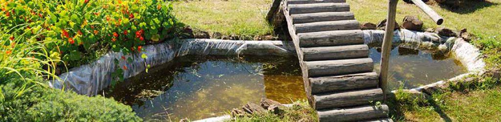 Teich absichern